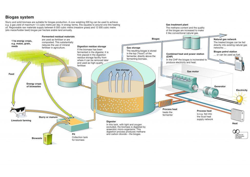 Biovolt Aktie