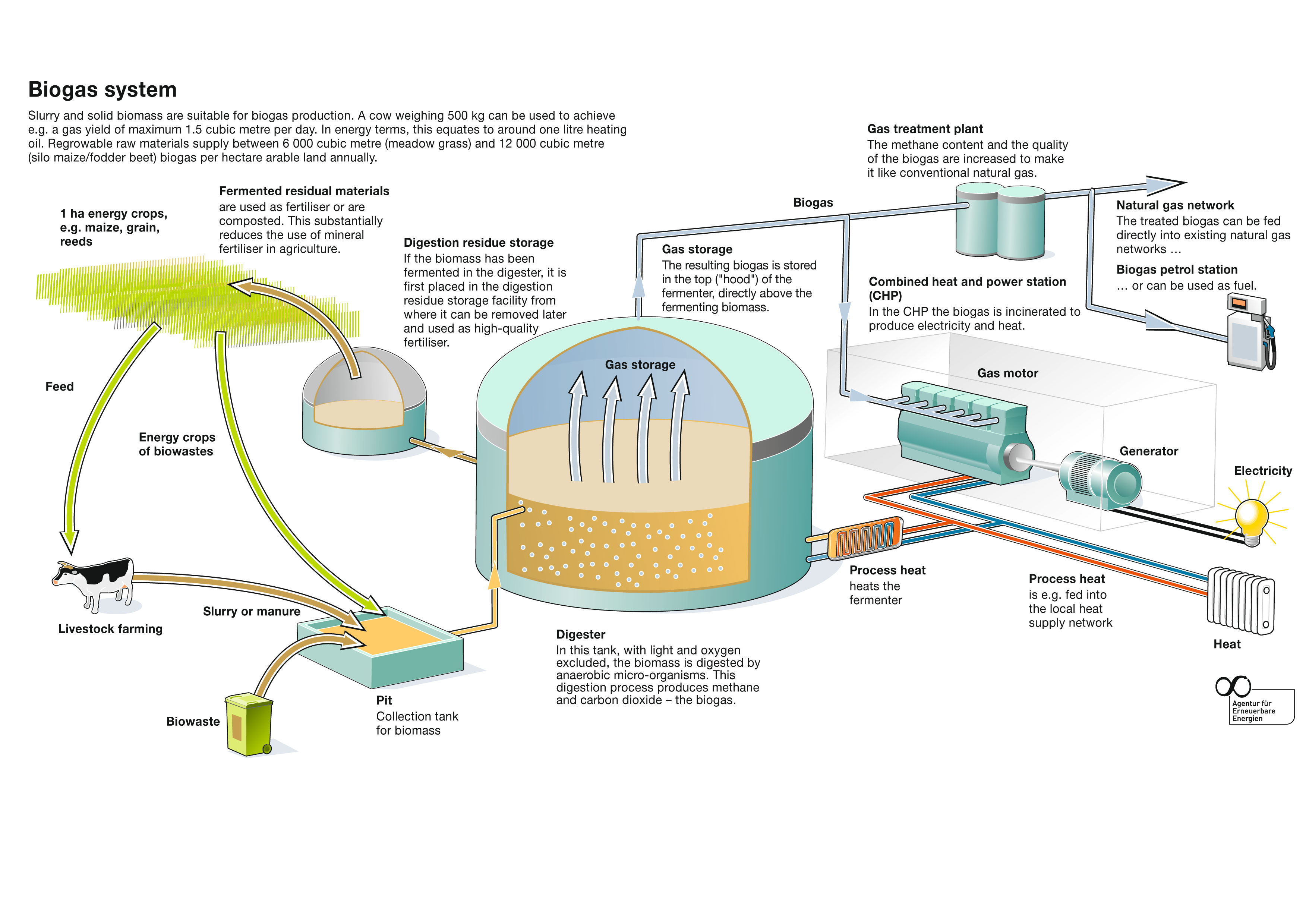 Biogaserzeugung